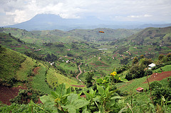 Expats moving to Uganda will be treated to stunning natural scenery.
