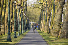 Brussels has many beautiful parks which can be used for exercise