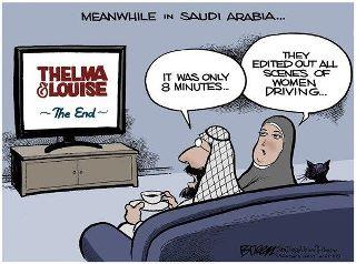 Saudi driving comic