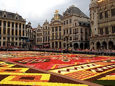 The Flower Carpet in the Grand Place is a famous event in Brussels