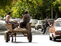 culture shock in Argentina, horse drawn cart in the city