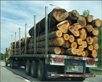 Logging Truck to show working in canada
