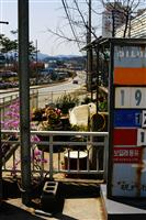 Rural South Korea - copyright Sally Bucey