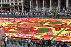 Flower Carpet in Brussels - What's On in Brussels